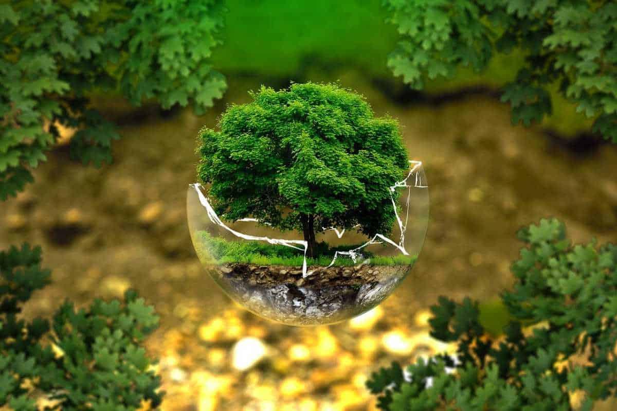 Skrivdagbok för miljö