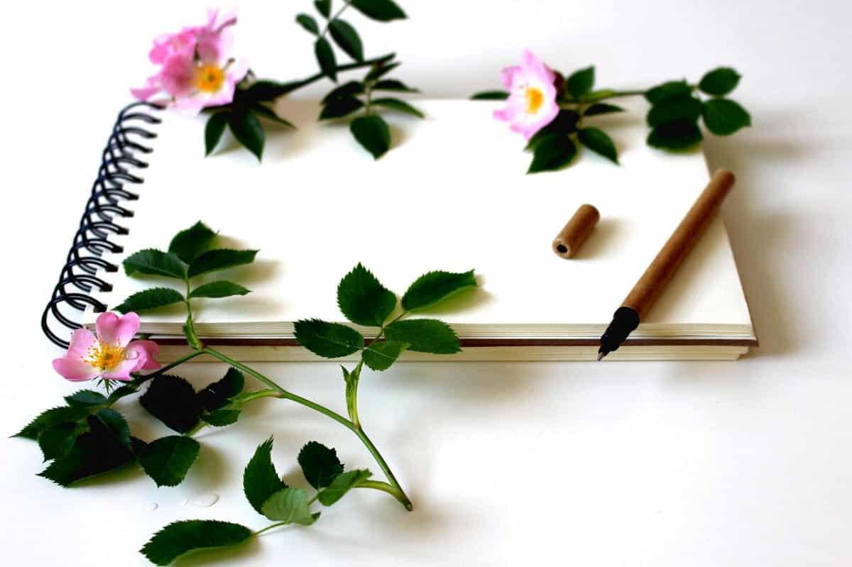 Skriv ett kärleksbrev