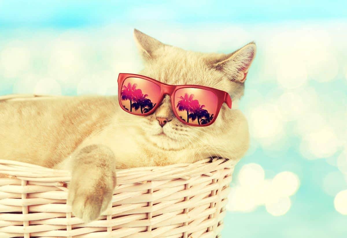 Gestalta en sommardag