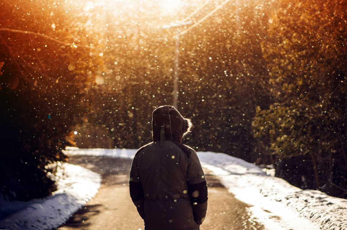 Snödans