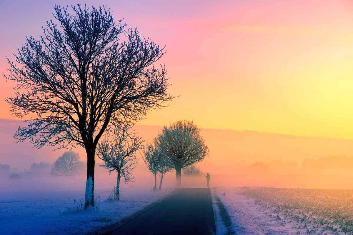 Februarimorgon